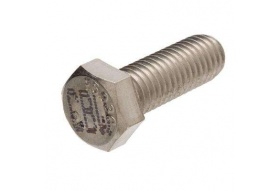Stainless Steel Bolt - (1/4